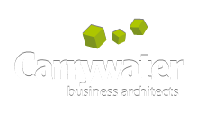 Carrywater - business architects